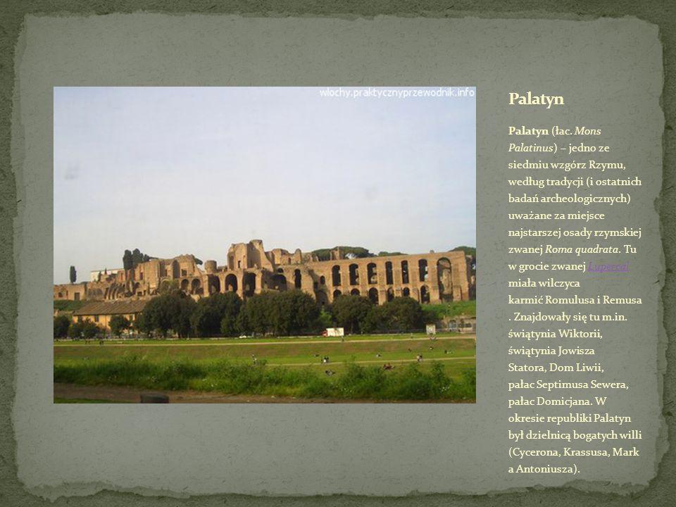 Palatyn (łac.