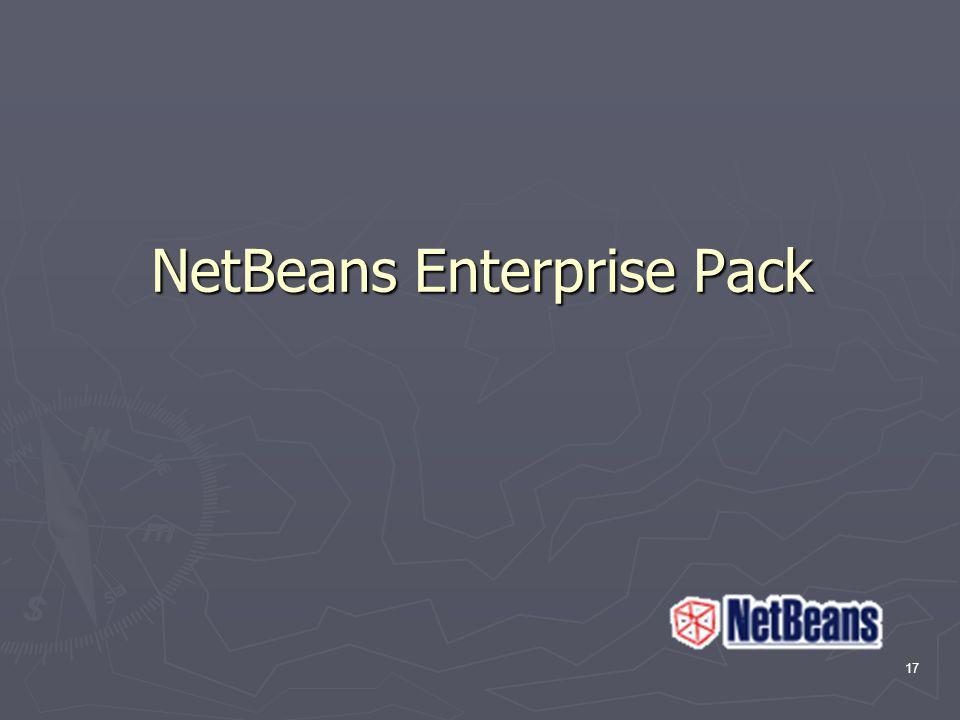 17 NetBeans Enterprise Pack