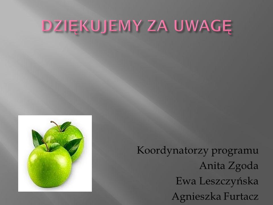 Koordynatorzy programu Anita Zgoda Ewa Leszczyńska Agnieszka Furtacz