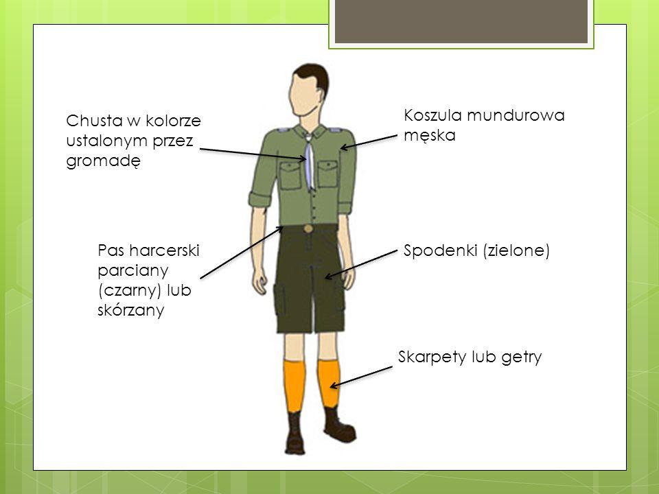 Chusta w kolorze ustalonym przez gromadę Koszula mundurowa męska Pas harcerski parciany (czarny) lub skórzany Spodenki (zielone) Skarpety lub getry