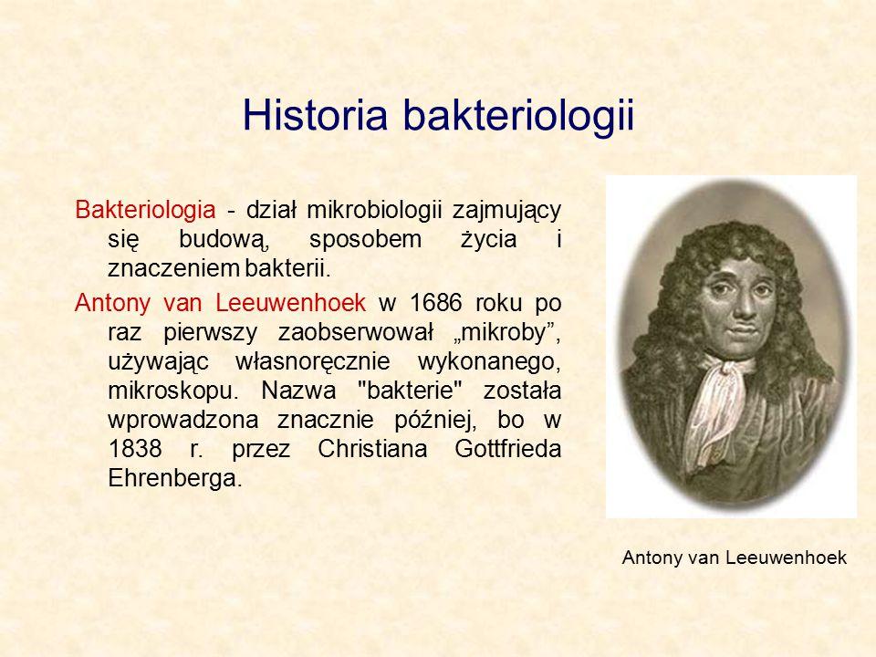 Historia bakteriologii Bakteriologia - dział mikrobiologii zajmujący się budową, sposobem życia i znaczeniem bakterii. Antony van Leeuwenhoek w 1686 r