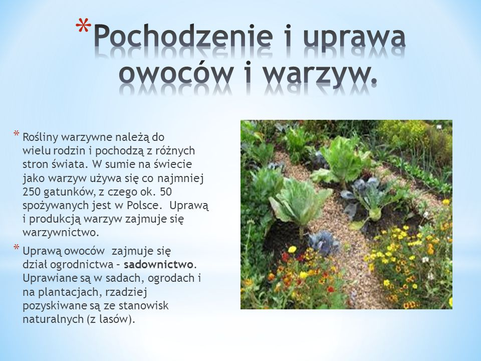 * Rośliny warzywne należą do wielu rodzin i pochodzą z różnych stron świata. W sumie na świecie jako warzyw używa się co najmniej 250 gatunków, z czeg