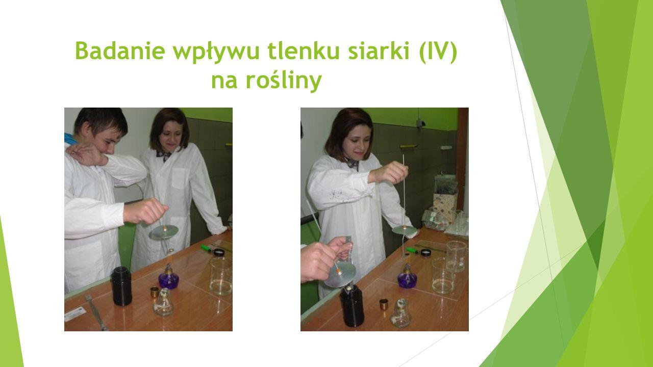 Badanie wpływu tlenku siarki (IV) na rośliny
