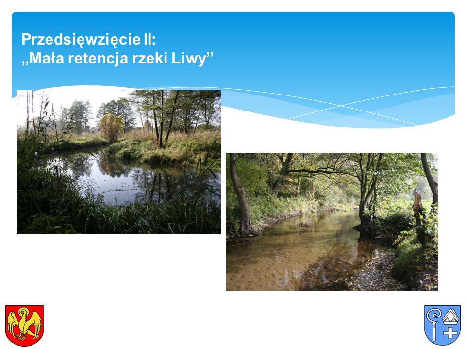 """Przedsięwzięcie II: """"Mała retencja rzeki Liwy"""