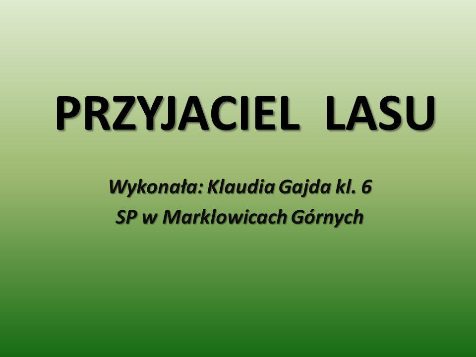 PRZYJACIEL LASU Wykonała: Klaudia Gajda kl. 6 SP w Marklowicach Górnych