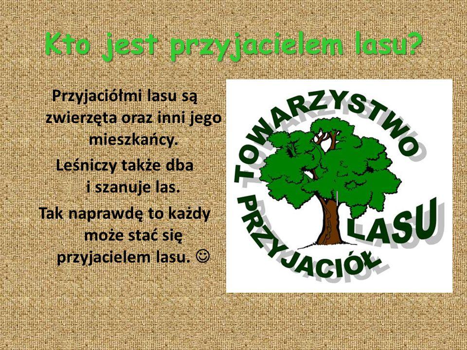 Kto jest przyjacielem lasu? Przyjaciółmi lasu są zwierzęta oraz inni jego mieszkańcy. Leśniczy także dba i szanuje las. Tak naprawdę to każdy może sta