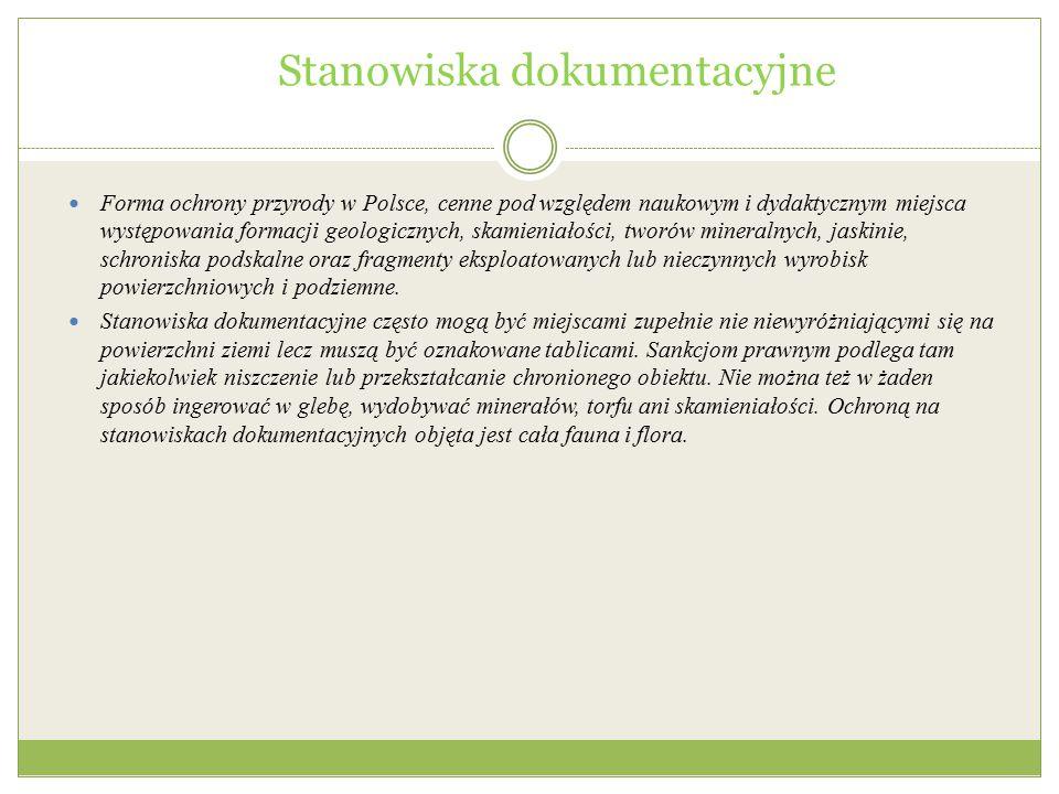 Stanowiska dokumentacyjne Forma ochrony przyrody w Polsce, cenne pod względem naukowym i dydaktycznym miejsca występowania formacji geologicznych, ska