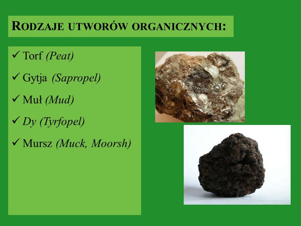 R ODZAJE UTWORÓW ORGANICZNYCH : Torf (Peat) Gytja (Sapropel) Muł (Mud) Dy (Tyrfopel) Mursz (Muck, Moorsh)