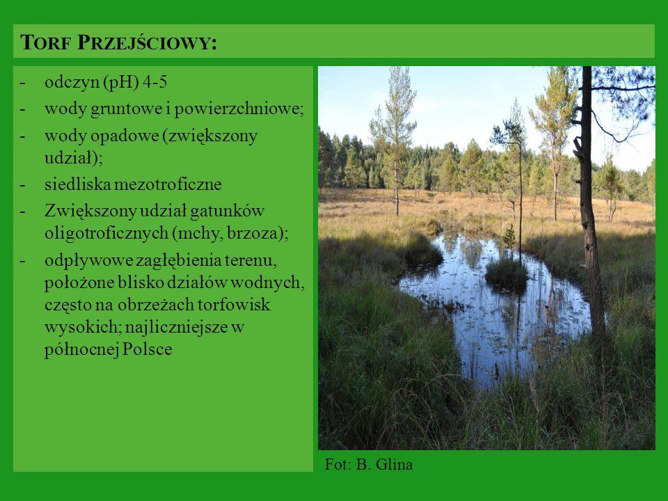 -odczyn (pH) 4-5 -wody gruntowe i powierzchniowe; -wody opadowe (zwiększony udział); -siedliska mezotroficzne -Zwiększony udział gatunków oligotroficz