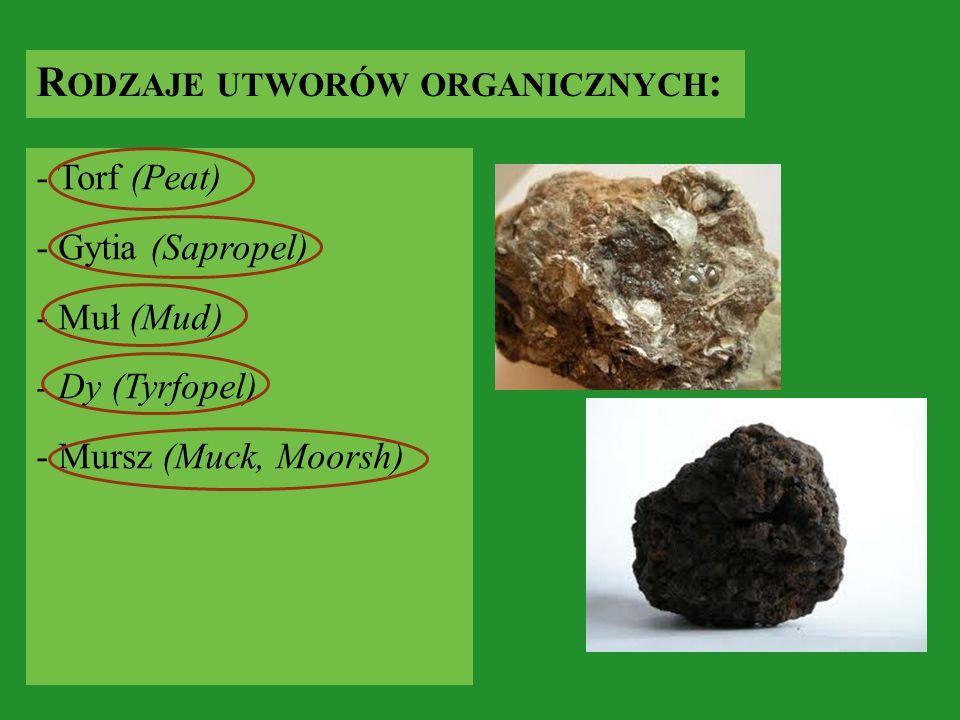 R ODZAJE UTWORÓW ORGANICZNYCH : - Torf (Peat) - Gytia (Sapropel) - Muł (Mud) - Dy (Tyrfopel) - Mursz (Muck, Moorsh)