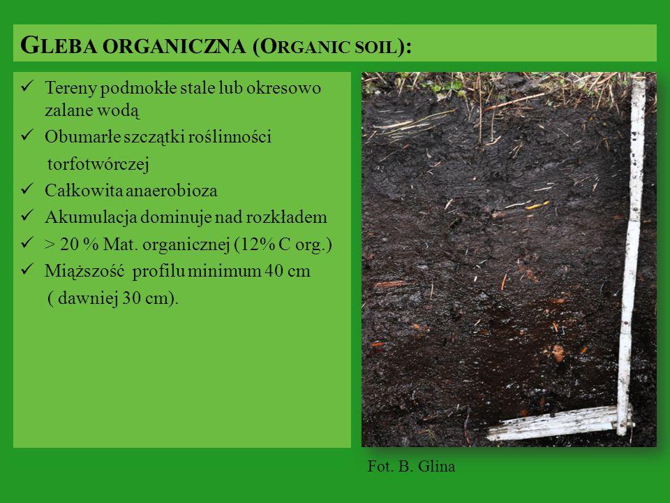 Tereny podmokłe stale lub okresowo zalane wodą Obumarłe szczątki roślinności torfotwórczej Całkowita anaerobioza Akumulacja dominuje nad rozkładem > 2
