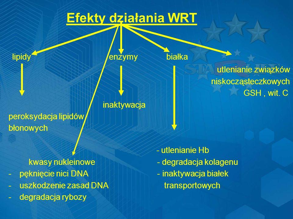 Efekty działania WRT lipidy enzymy białka utlenianie związków niskocząsteczkowych GSH, wit.