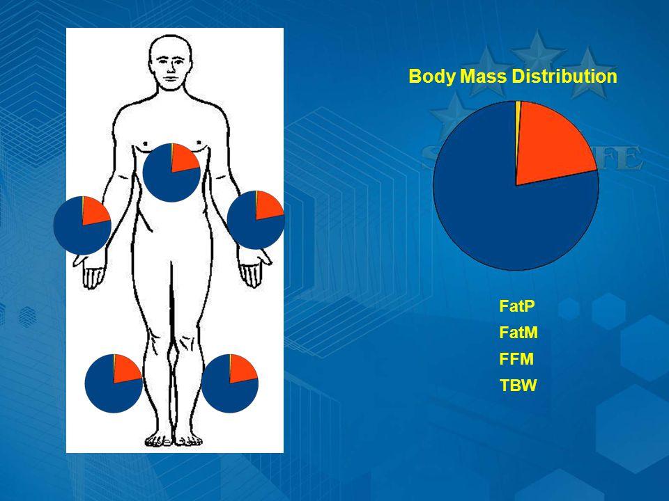 Body Mass Distribution FatM FatP FFM TBW