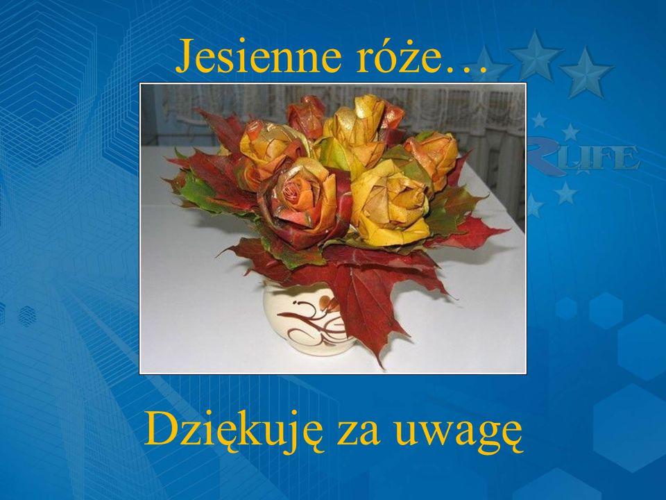 Jesienne róże… Dziękuję za uwagę