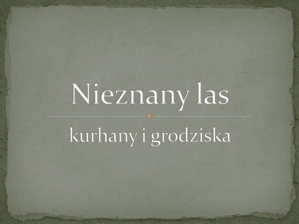 Kurhan – rodzaj mogiły, w kształcie kopca lub półkola, z elementami drewnianymi, kamiennymi lub mieszanymi, w którym znajduje się komora grobowa z pochówkiem szkieletowym lub ciałopalnym.