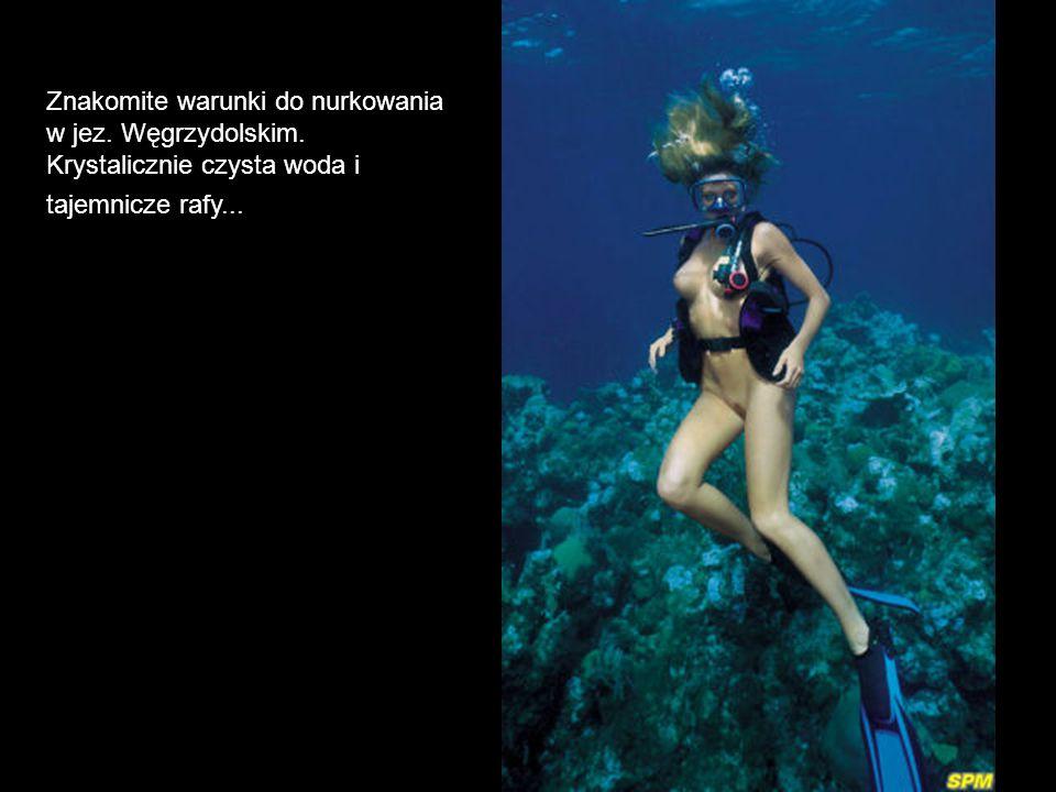 Znakomite warunki do nurkowania w jez. Węgrzydolskim. Krystalicznie czysta woda i tajemnicze rafy...