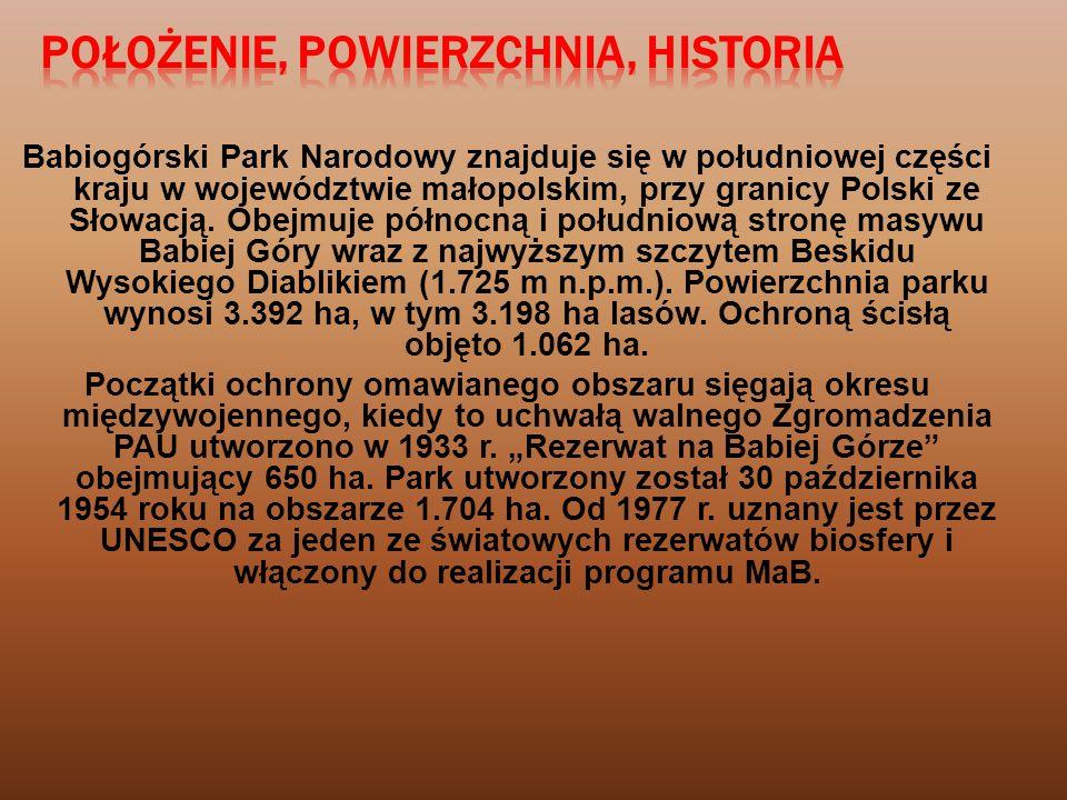 Babiogórski Park Narodowy znajduje się w południowej części kraju w województwie małopolskim, przy granicy Polski ze Słowacją.
