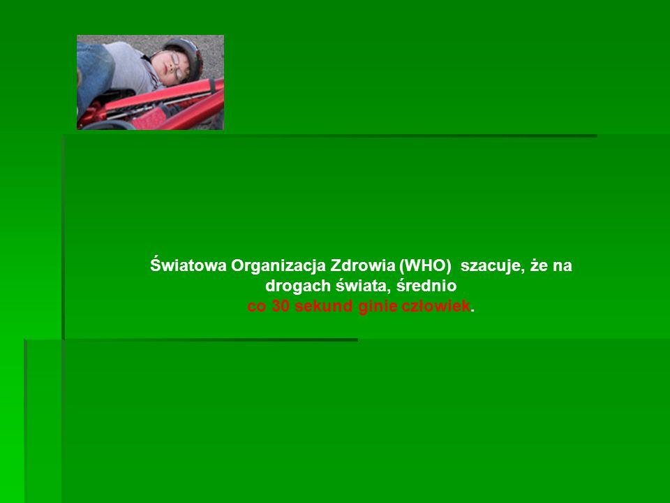 Światowa Organizacja Zdrowia (WHO) szacuje, że na drogach świata, średnio co 30 sekund ginie człowiek.