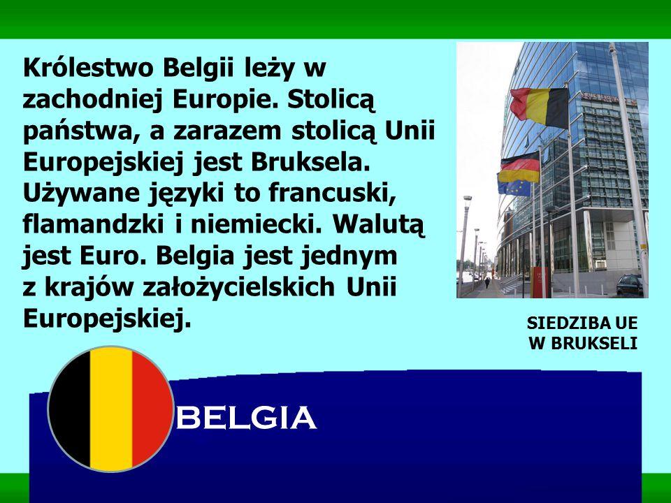 Królestwo Belgii leży w zachodniej Europie. Stolicą państwa, a zarazem stolicą Unii Europejskiej jest Bruksela. Używane języki to francuski, flamandzk