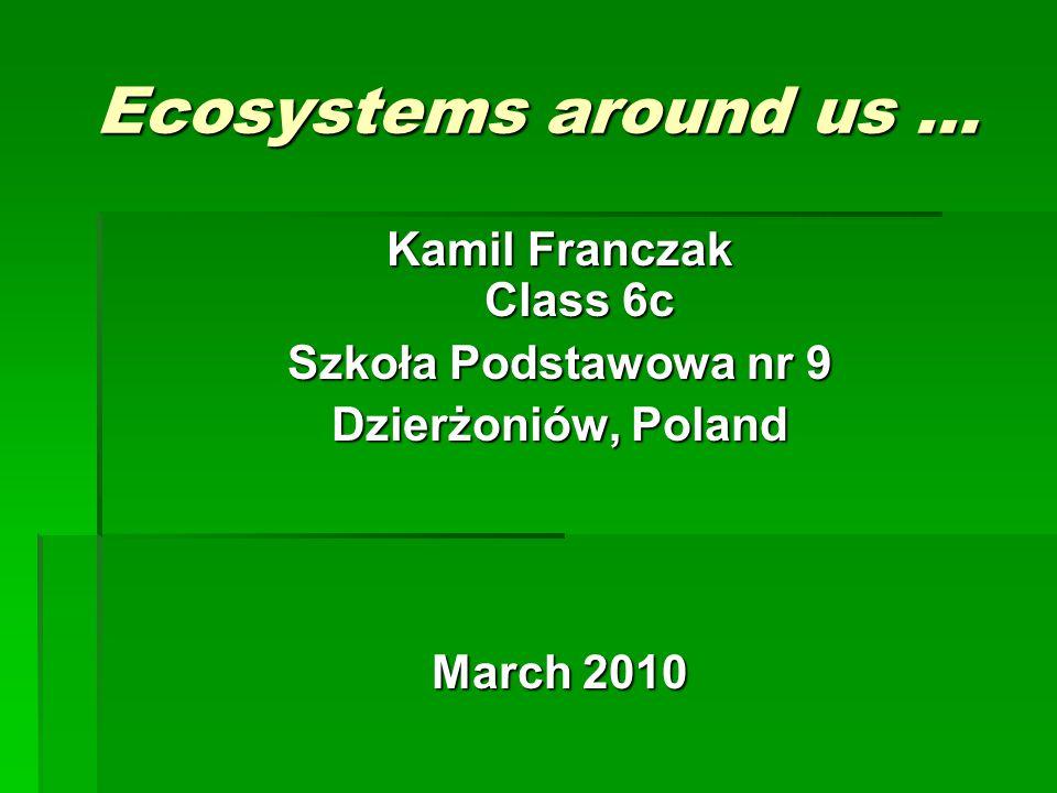 Ecosystems around us … Kamil Franczak Class 6c Szkoła Podstawowa nr 9 Dzierżoniów, Poland March 2010