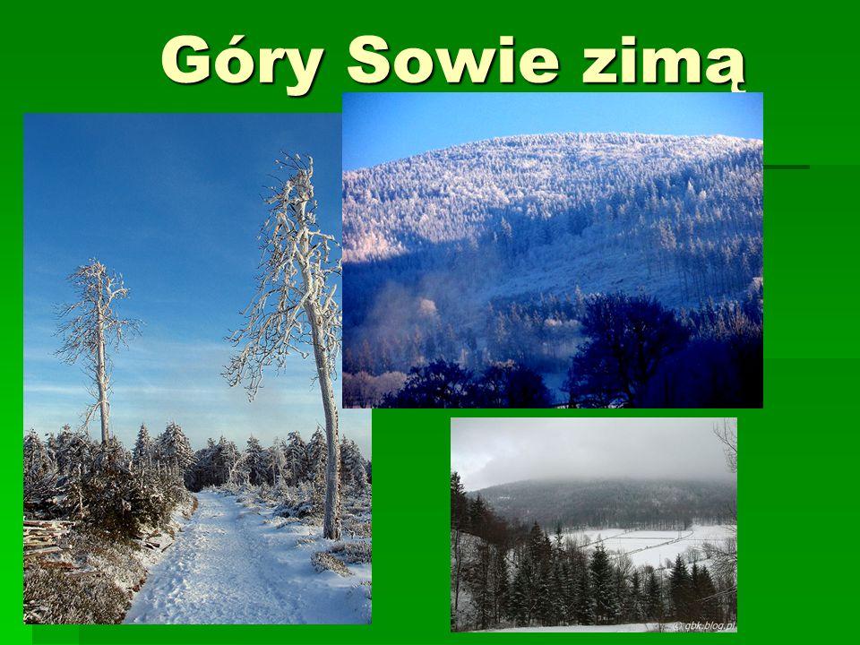 Góry Sowie latem Góry Sowie latem