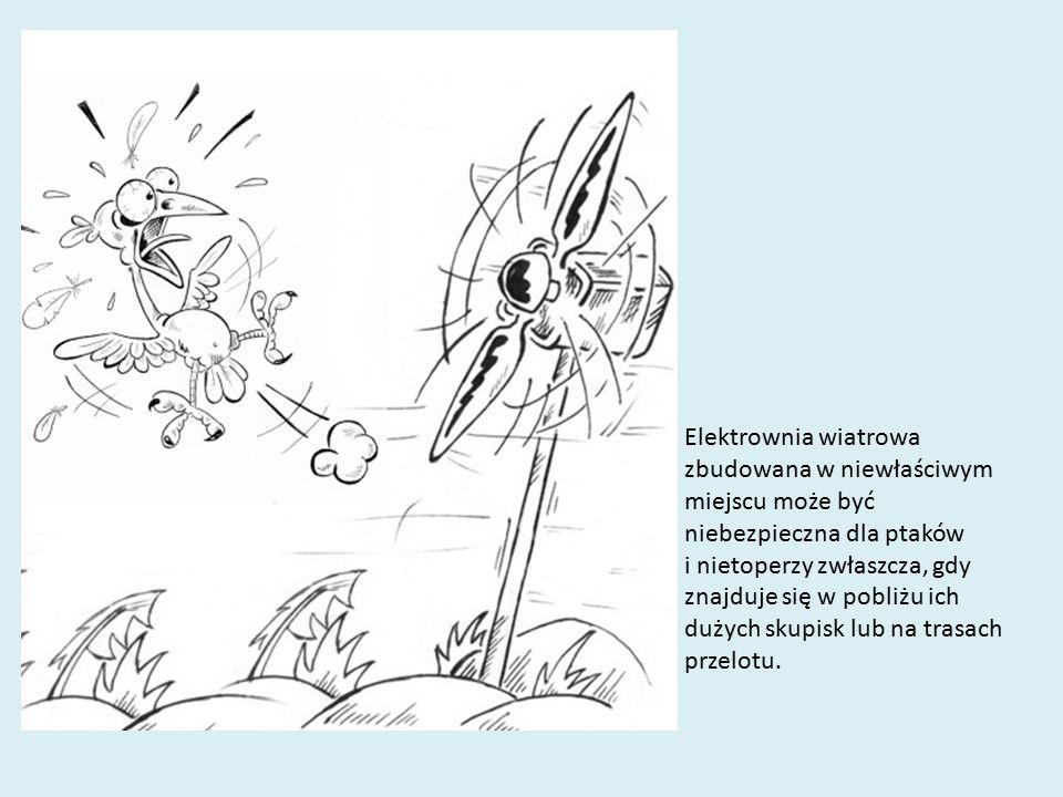 Elektrownia wiatrowa zbudowana w niewłaściwym miejscu może być niebezpieczna dla ptaków i nietoperzy zwłaszcza, gdy znajduje się w pobliżu ich dużych