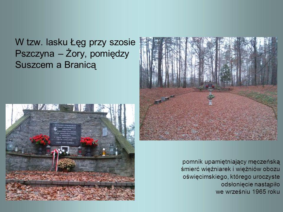 W tzw. lasku Łęg przy szosie Pszczyna – Żory, pomiędzy Suszcem a Branicą pomnik upamiętniający męczeńską śmierć więźniarek i więźniów obozu oświęcimsk