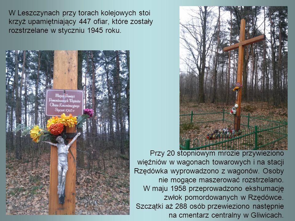 W Leszczynach przy torach kolejowych stoi krzyż upamiętniający 447 ofiar, które zostały rozstrzelane w styczniu 1945 roku. Przy 20 stopniowym mrozie p