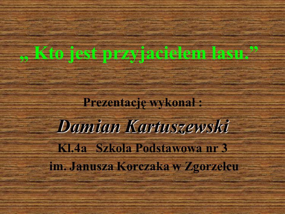 """"""" Kto jest przyjacielem lasu."""" Prezentację wykonał : Damian Kartuszewski Kl.4a Szkoła Podstawowa nr 3 im. Janusza Korczaka w Zgorzelcu"""