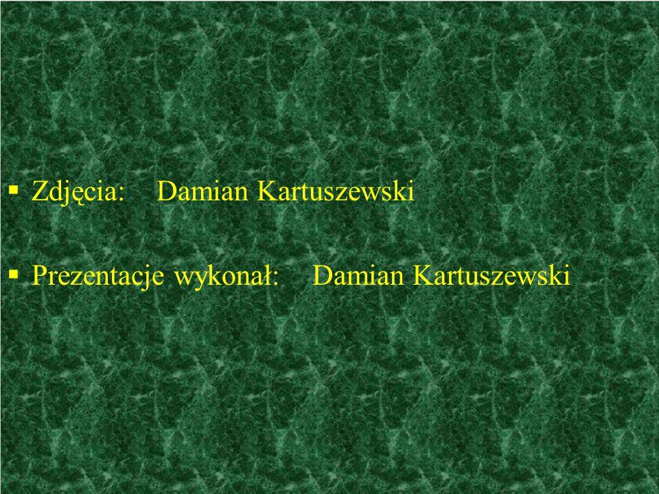  Zdjęcia: Damian Kartuszewski  Prezentacje wykonał: Damian Kartuszewski