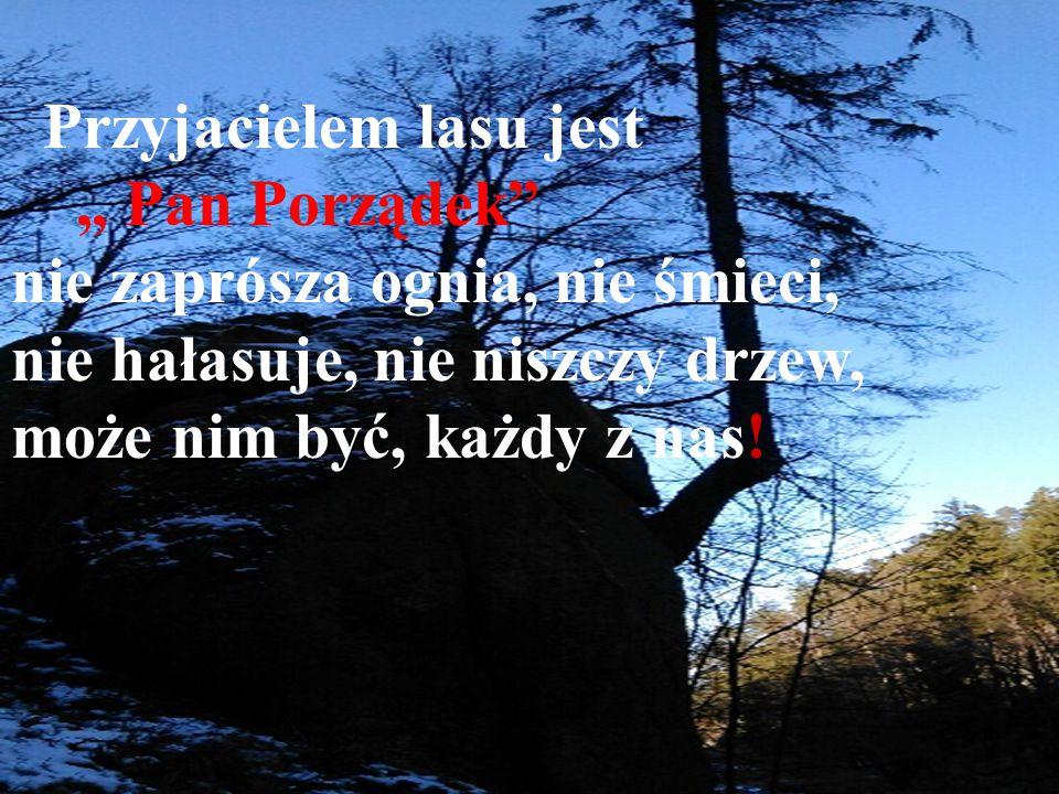 """Przyjacielem lasu jest """" Pan Porządek nie zaprósza ognia, nie śmieci, nie hałasuje, nie niszczy drzew, może nim być, każdy z nas!"""