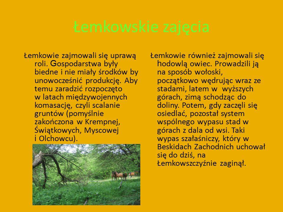 Łemkowskie zajęcia Łemkowie zajmowali się uprawą roli. G ospodarstwa były biedne i nie miały środków by unowocześnić produkcję. Aby temu zaradzić rozp