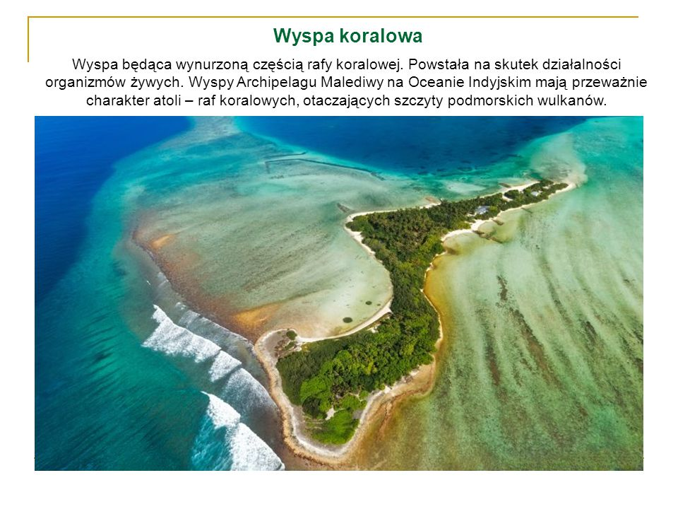 Wyspa koralowa Wyspa będąca wynurzoną częścią rafy koralowej. Powstała na skutek działalności organizmów żywych. Wyspy Archipelagu Malediwy na Oceanie