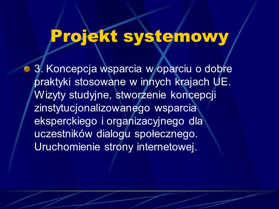 Projekt systemowy 3. Koncepcja wsparcia w oparciu o dobre praktyki stosowane w innych krajach UE. Wizyty studyjne, stworzenie koncepcji zinstytucjonal