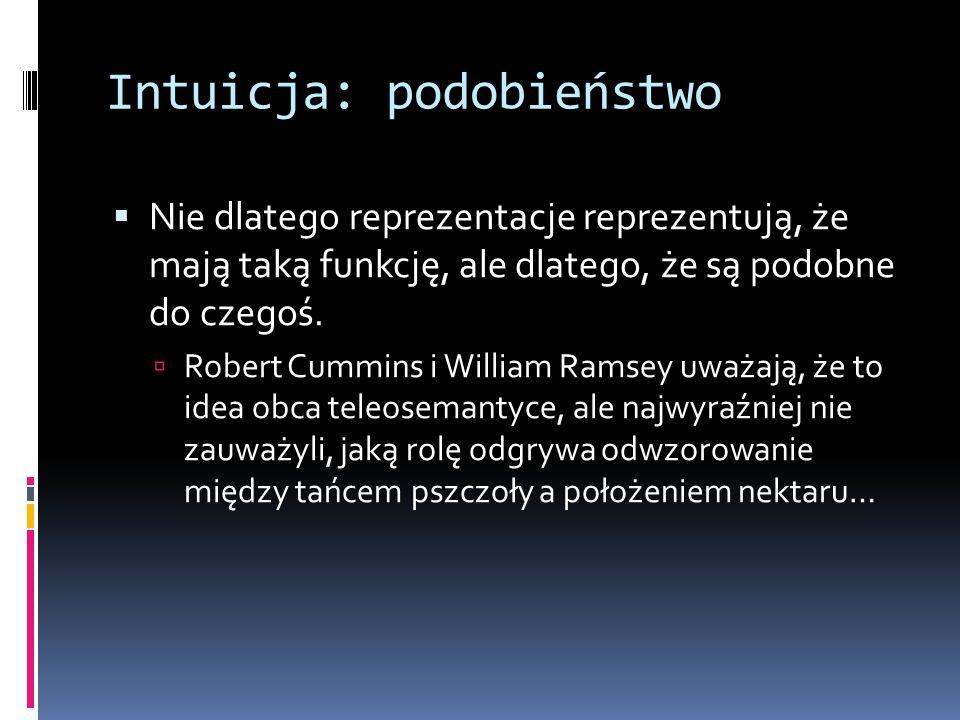 Intuicja: podobieństwo  Nie dlatego reprezentacje reprezentują, że mają taką funkcję, ale dlatego, że są podobne do czegoś.  Robert Cummins i Willia