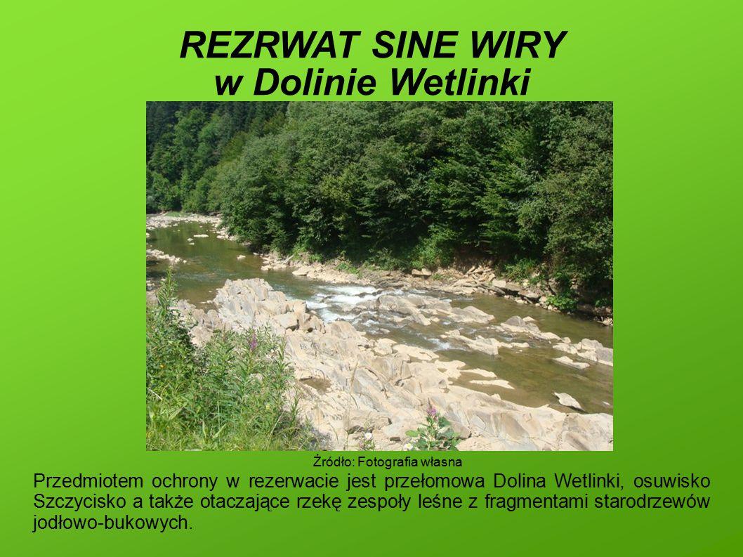REZRWAT SINE WIRY w Dolinie Wetlinki Przedmiotem ochrony w rezerwacie jest przełomowa Dolina Wetlinki, osuwisko Szczycisko a także otaczające rzekę zespoły leśne z fragmentami starodrzewów jodłowo-bukowych.