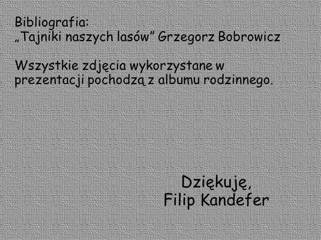"""Bibliografia: """"Tajniki naszych lasów"""" Grzegorz Bobrowicz Wszystkie zdjęcia wykorzystane w prezentacji pochodzą z albumu rodzinnego. Dziękuję, Filip Ka"""