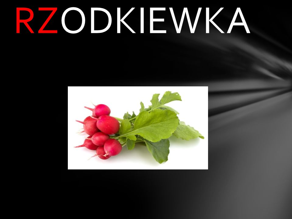_ODKIEWKA ż rz