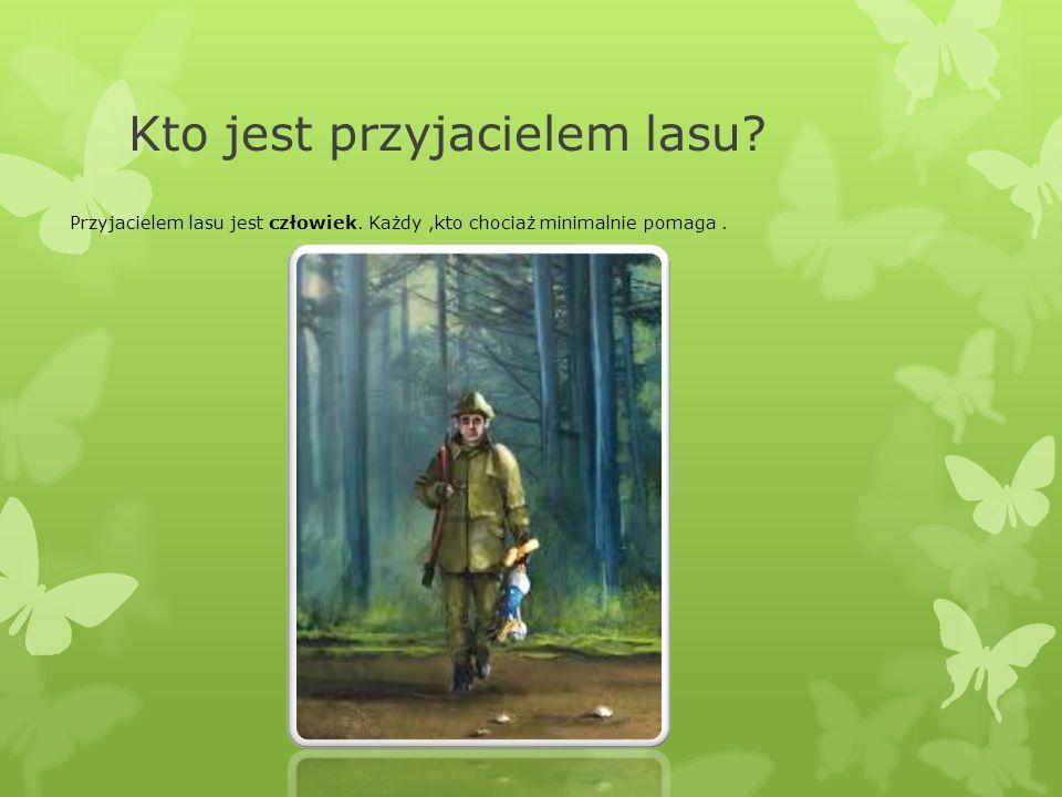 Kto jest przyjacielem lasu? Przyjacielem lasu jest człowiek. Każdy,kto chociaż minimalnie pomaga.