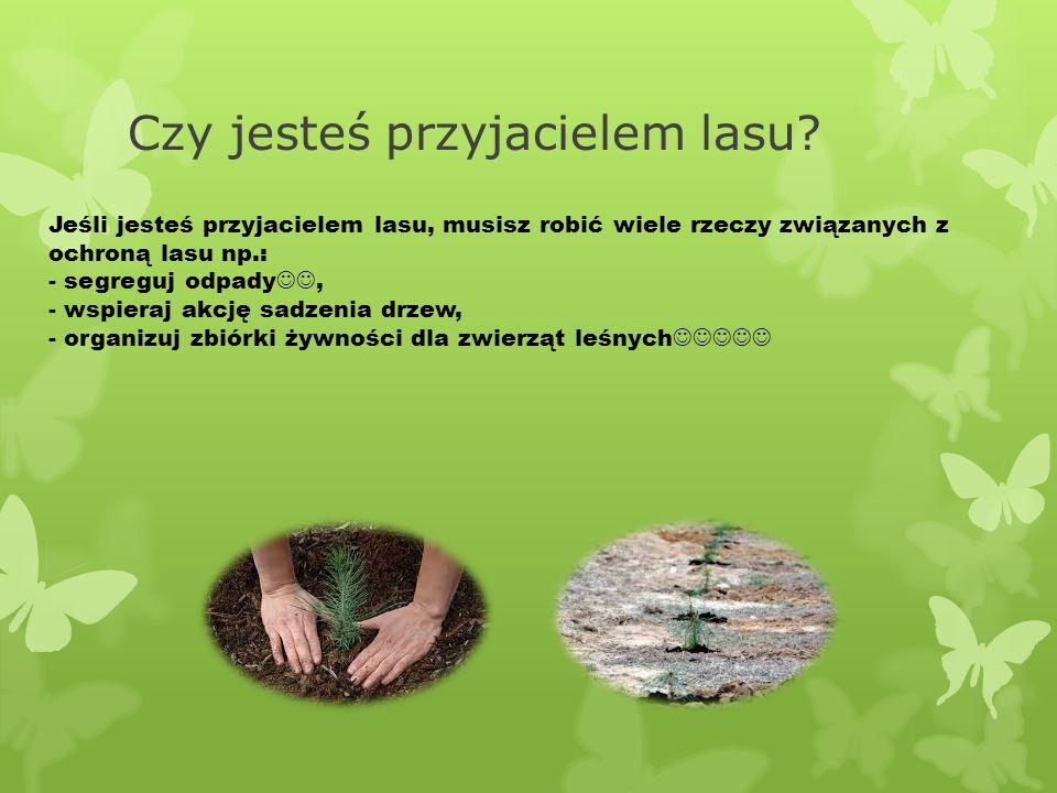Czy jesteś przyjacielem lasu? Jeśli jesteś przyjacielem lasu, musisz robić wiele rzeczy związanych z ochroną lasu np.: - segreguj odpady, - wspieraj a