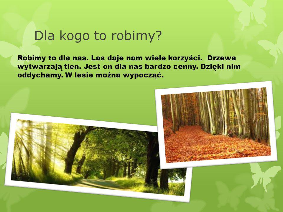 Dla kogo to robimy? Robimy to dla nas. Las daje nam wiele korzyści. Drzewa wytwarzają tlen. Jest on dla nas bardzo cenny. Dzięki nim oddychamy. W lesi