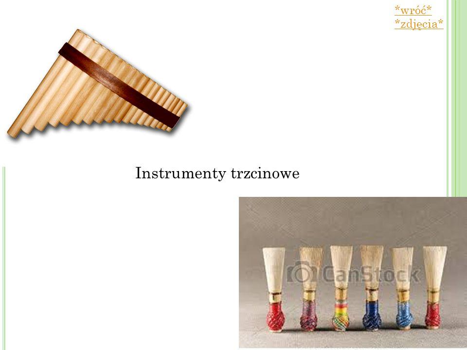 Instrumenty trzcinowe *wróć* *zdjęcia*
