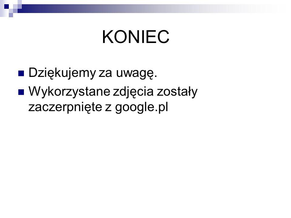 KONIEC Dziękujemy za uwagę. Wykorzystane zdjęcia zostały zaczerpnięte z google.pl
