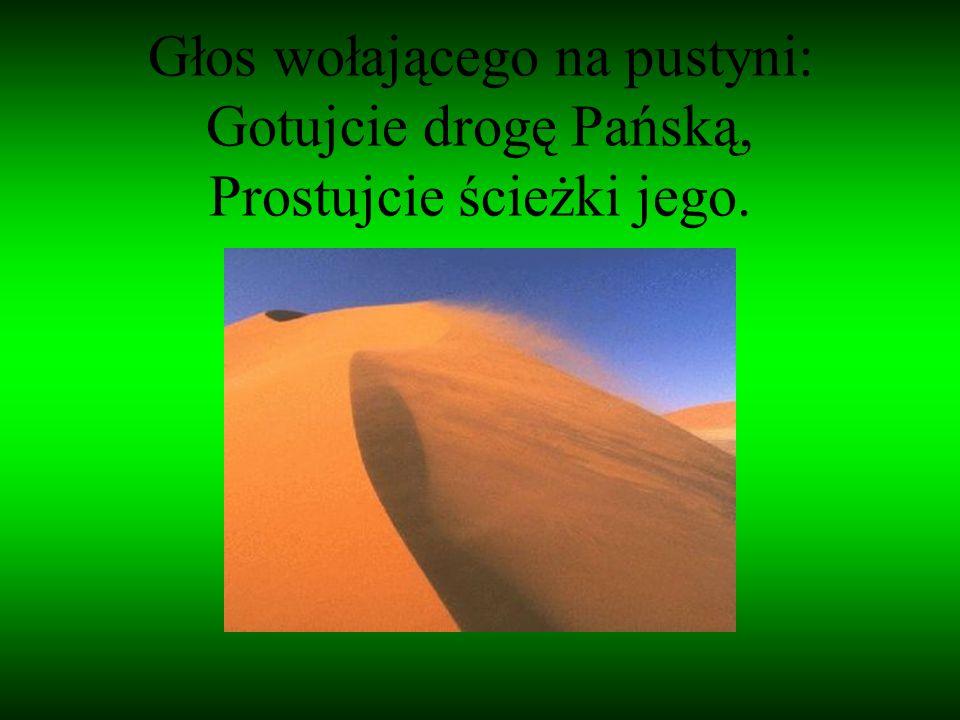 Głos wołającego na pustyni: Gotujcie drogę Pańską, Prostujcie ścieżki jego.