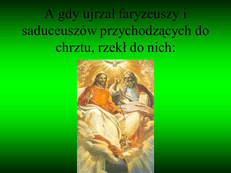 A gdy ujrzał faryzeuszy i saduceuszów przychodzących do chrztu, rzekł do nich: