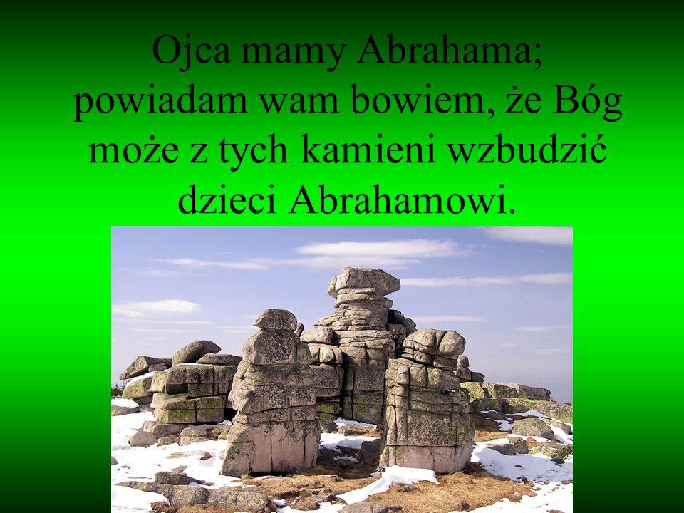 Ojca mamy Abrahama; powiadam wam bowiem, że Bóg może z tych kamieni wzbudzić dzieci Abrahamowi.