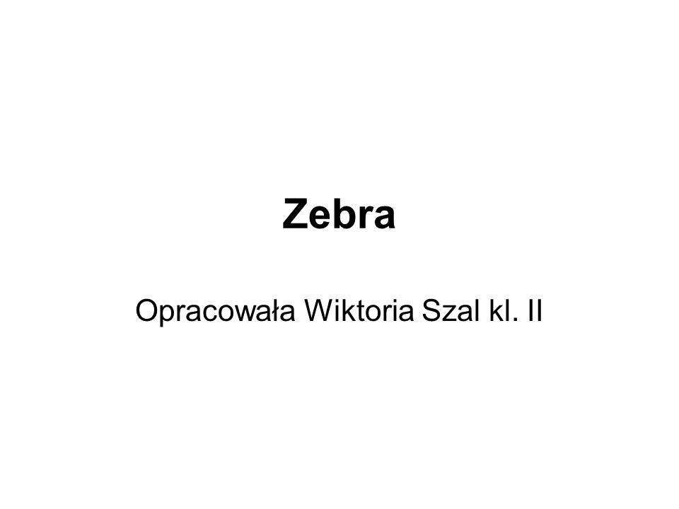 Zebra Opracowała Wiktoria Szal kl. II