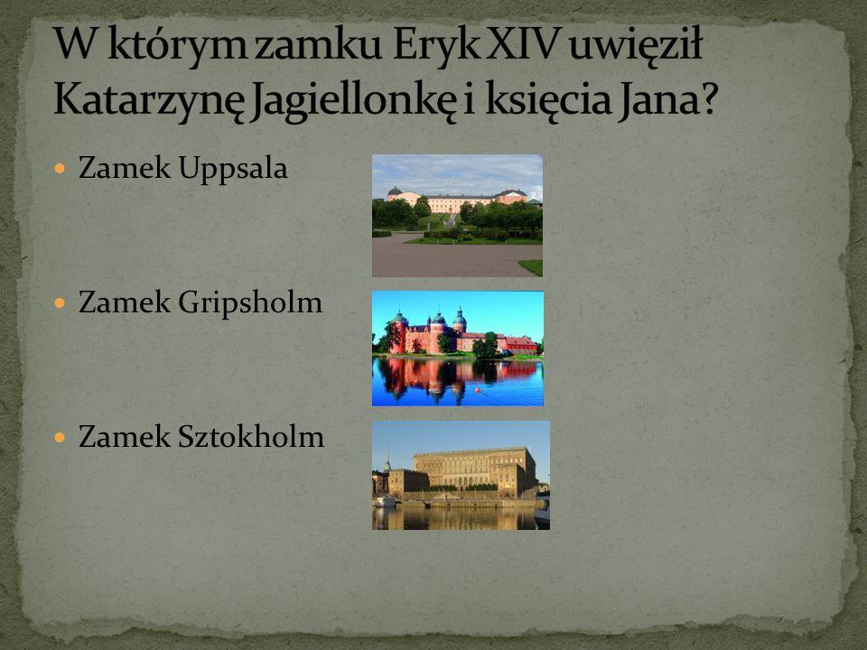 Zamek Uppsala Zamek Gripsholm Zamek Sztokholm