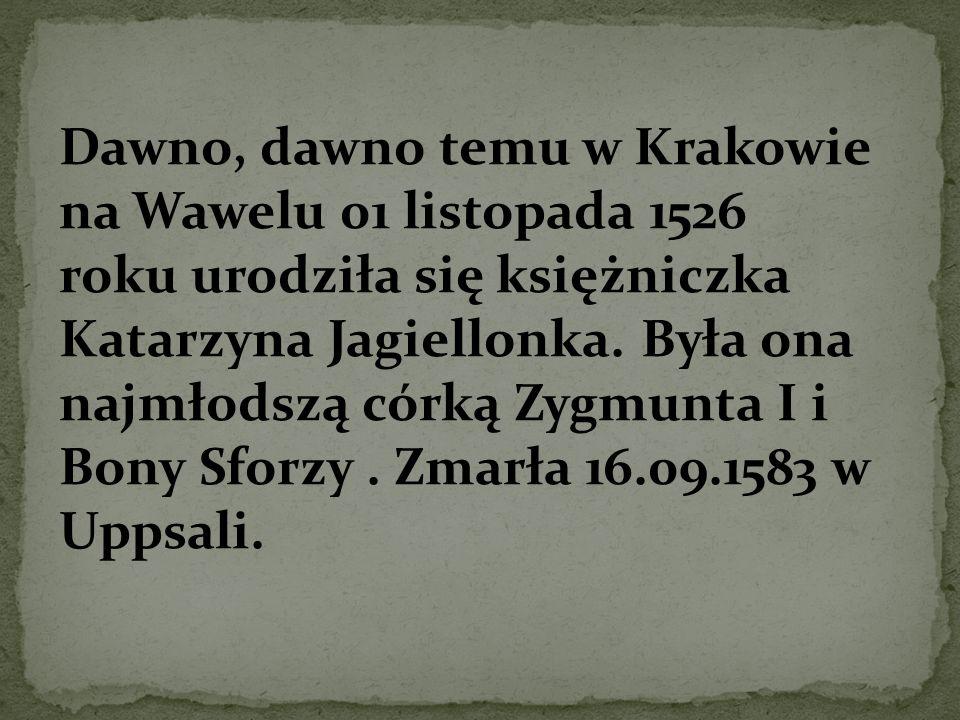 Dawno, dawno temu w Krakowie na Wawelu 01 listopada 1526 roku urodziła się księżniczka Katarzyna Jagiellonka. Była ona najmłodszą córką Zygmunta I i B