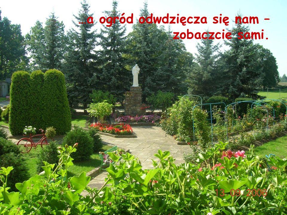 …a ogród odwdzięcza się nam – zobaczcie sami.